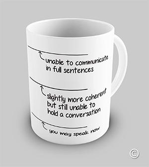 you-may-speak-now-mug